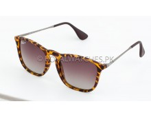 RAY BAN CHRIS 4187 Sunglasses